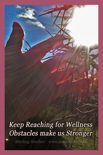 Oracle Sterling Sinclair Psychic Auracature Art Health and Fitness Reach for Wellness Obstacles Make Us Stronger Hawthorn Thorn Sunlight Hand copy