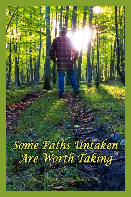 Oracle Sterling Sinclair Psychic Auracature Art Nature Walk Health and Fitness Some Paths Untaken are Worth Taking Take Chances See What Life is Like Man Standing on Trail in Woods in Sunlight copy